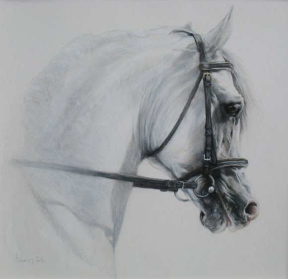 Portrait chevaux - Dessin cheval de trait ...